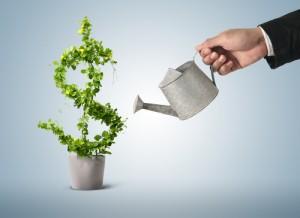 ניהול תיקי השקעות